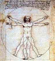 Портрет Анатомический чертеж