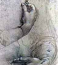 Portrait «Female hands and a comical sketch of a man's head»