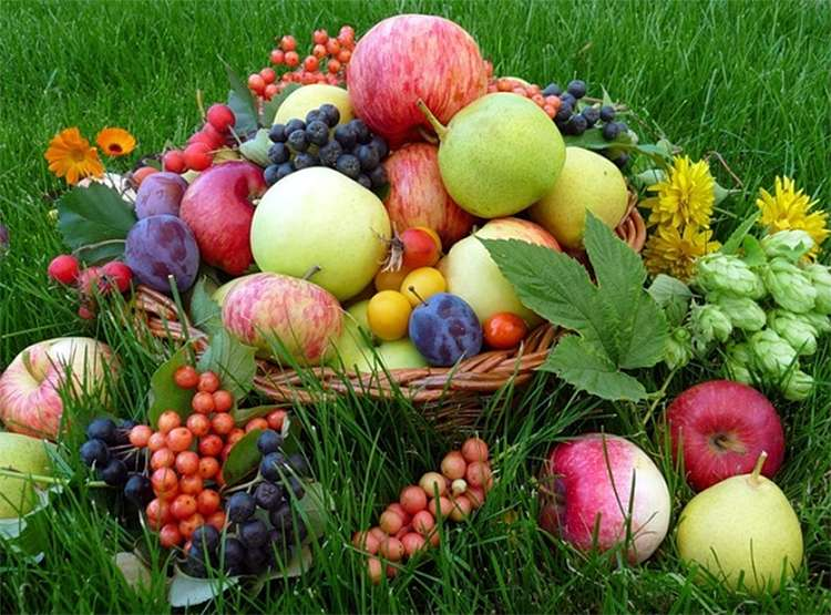 Картинки по запросу яблочный спас девушка